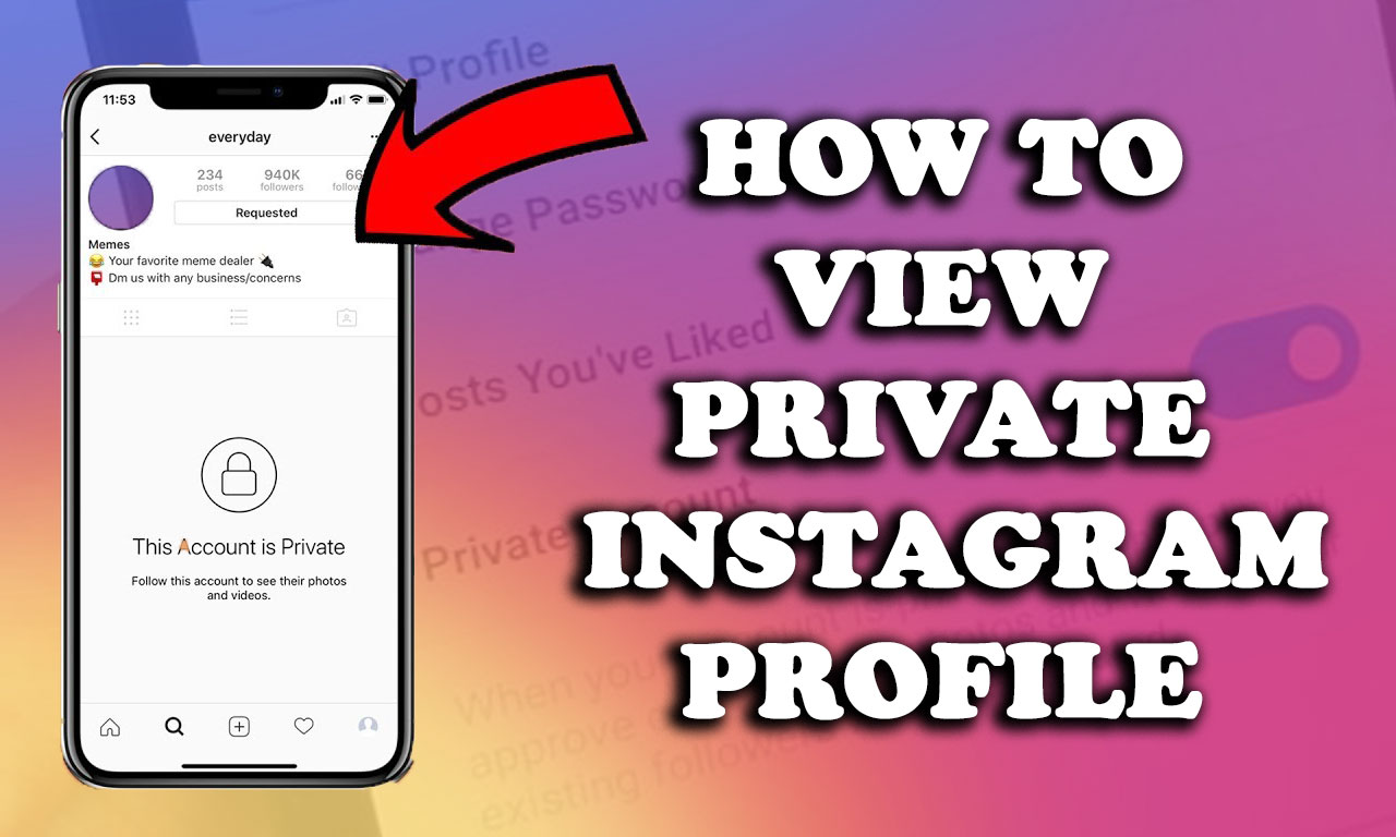 how-to-view-private-instagram-profile-in-2021